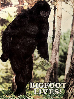 Bigfoot fan artwork.